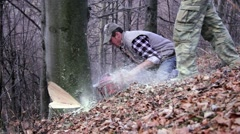 Worker who cuts a tree trunk with a chainsaw old from forest Stock Footage