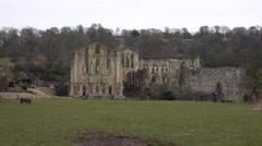 Rievaulx Abbey York England ancient ruins 4K Stock Footage