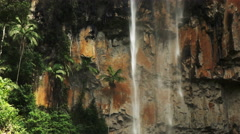 Palm trees and purlingbrook waterfall Stock Footage