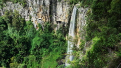Purlingbrook waterfall in springbrook national park Stock Footage
