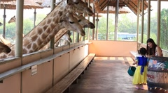Mother and two daughters feed a giraffe in Safari World. Bangkok, Thailand Stock Footage