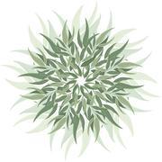Abstract nature eucalyptus ornament Stock Illustration