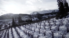 Aerial View: Rural Scenic Orchard Landscape Covered in Snow/Landscape Stock Footage