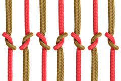 Different ropes tied  isolate on white background - stock photo