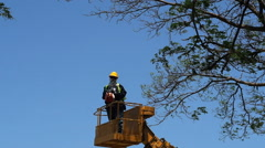 Tree pruning by a man with a chainsaw, standing on a mechanical platform. Stock Footage