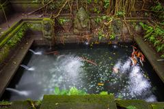 Bathing Pool in the The Holy Spring Temple,  Sacred Monkey Forest Sanctuary, Stock Photos
