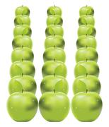 Green apples in row - stock illustration