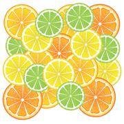 Various Citrus Slices Stock Illustration