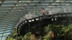 People visit Gardens by the Bay in Singapore, Singapore. Stock Footage