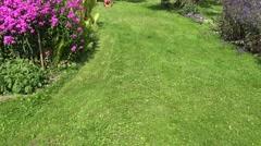 Female cut green meadow with lawn mower in flower garden. 4K Stock Footage