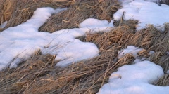 Rural Field with Snow Patches Stock Footage