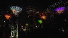 Colorful night light show at the Gardens by the Bay in Singapore. Stock Footage