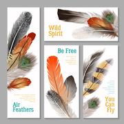 Feathers Banners Set Stock Illustration