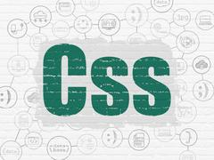 Software concept: Css on wall background - stock illustration