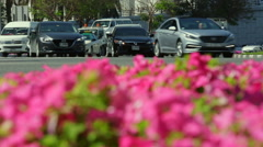 Traffic in spring day Stock Footage