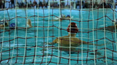 Water polo match  Stock Footage