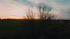 Field at Sunset in Front Tree From the Air - stock footage