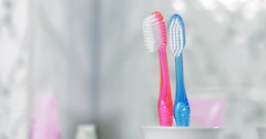 Adding Child Toothbrush into the Holder. Child Birth Concept Stock Footage