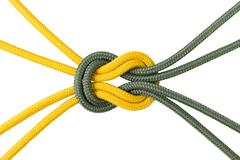 Different ropes tied isolate on white with clipping path Stock Photos