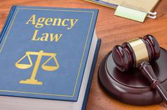 A law book with a gavel - Agency law Stock Photos