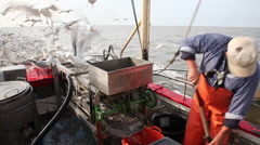 Working on a shrimp boat Stock Footage