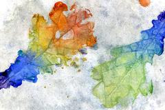 Colorful Oak Leaves - stock illustration