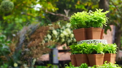 green plant pot tier set up for wedding ceremony in romantic garden - stock footage