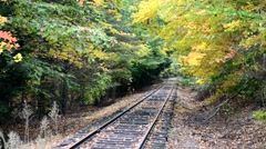 Foliage scenery with trees and railway track - stock footage