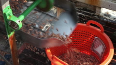 The sorting machine on a shrimp boat Stock Footage