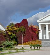 Bright autumnal plans in park near Dorian portico of building. - stock photo