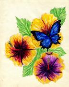 Painted Hibiscus Stock Illustration