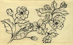 Sakura Doodle - stock illustration