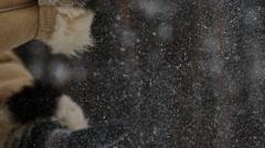 Siberian chopping wood 2 - stock footage