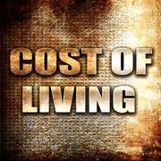 cost of living - stock illustration