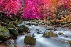 Waterfall in deep rain forest jungle (Krok E Dok Waterfall Saraburi) Thailand Stock Photos
