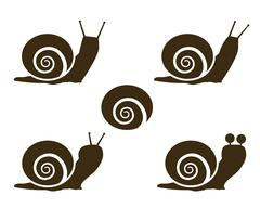 Set of Snail icon and signs - stock illustration
