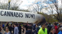 Giant blunt at a pro-marijuana rally in Washington, D.C. - stock footage