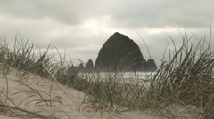 Haystack Rock From Cannon Beach Dunes Stock Footage