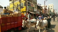 Tiruchirappalli - Street view with oxen pulling cart, people and traffic. Stock Footage