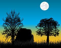 Beautiful dawning in wood - stock illustration