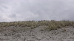 Dunes and dune grass Stock Footage