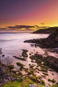 Morning Light near the sea - stock photo