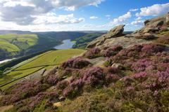 View from Derwent Edge, Peak District National Park, Derbyshire, England, United Stock Photos