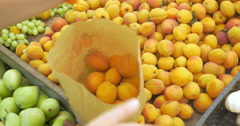 Woman choosing ripe apricots on the market Stock Footage