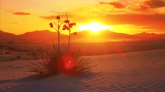 White Sands National Monument Sunset, New Mexico - Timelapse Stock Footage