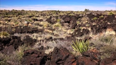 Volcanic Landscape at Valley of Fires Recreation Area in New Mexico - stock footage