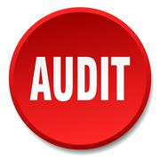 audit red round flat isolated push button - stock illustration