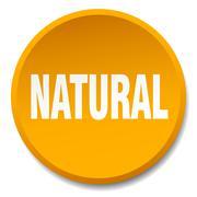 natural orange round flat isolated push button - stock illustration