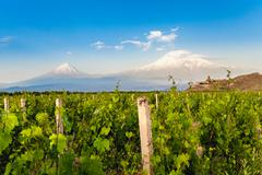 Khor Virap and Mount Ararat Stock Photos