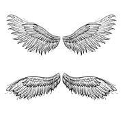 Stock Illustration of Angel wings, vector illustration